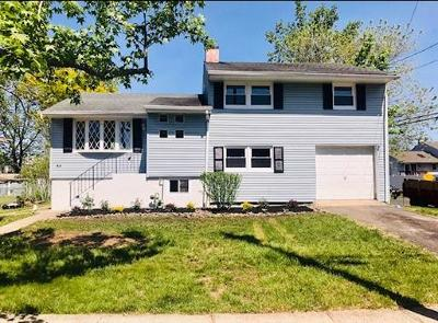 Fords Single Family Home For Sale: 45 S Oak Avenue