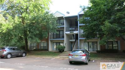 Piscataway Condo/Townhouse For Sale: 311 Hampshire Court