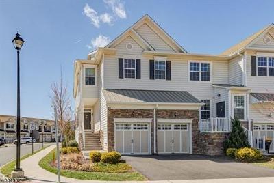 Somerset County Condo/Townhouse For Sale: 26 Autumn Lane