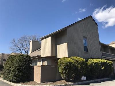 Edison Condo/Townhouse For Sale: 49 Denise Drive
