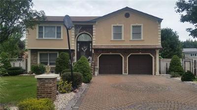 South Plainfield Single Family Home For Sale: 43 Diana Drive