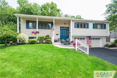 Edison Single Family Home For Sale: 70 Wilk Road