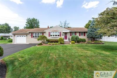 South Plainfield Single Family Home For Sale: 325 Spring Avenue