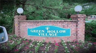 Iselin Condo/Townhouse For Sale: 1011 Green Hollow Drive #1011
