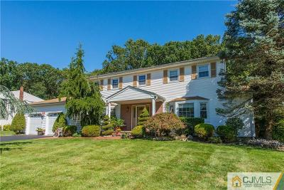 East Brunswick Single Family Home For Sale: 36 Francis Road