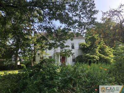Metuchen Single Family Home For Sale: 101 Rose Street