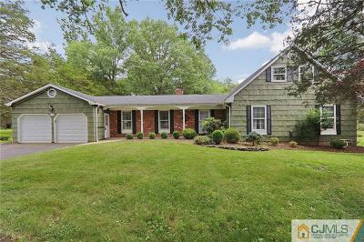 Somerset County Single Family Home For Sale: 680 Donald Drive N