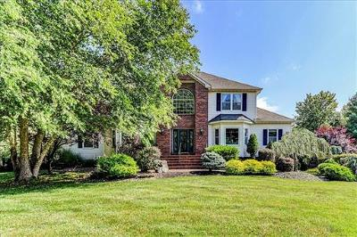 Single Family Home For Sale: 52 Jurgelsky Road