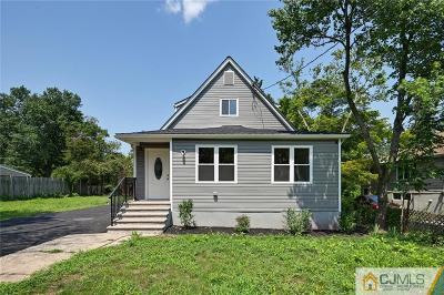 Somerset County Single Family Home For Sale: 274 West Point Avenue