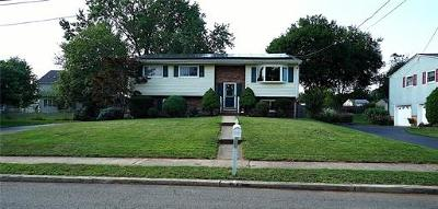 Piscataway Single Family Home For Sale: 20 Mitchell Street
