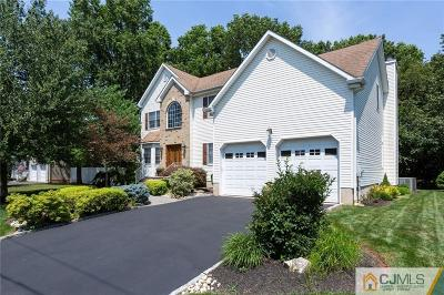 South Plainfield Single Family Home For Sale: 829 Spicer Avenue