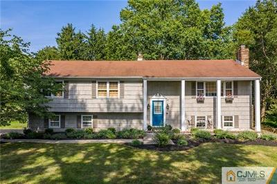 Somerset County Single Family Home For Sale: 34 Riverview Terrace