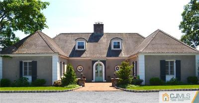 Piscataway Single Family Home For Sale: 15 Hillcrest Drive