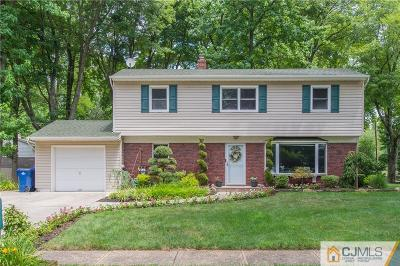 North Brunswick Single Family Home For Sale: 325 King Road
