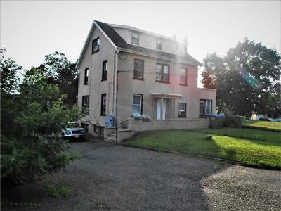 Edison Multi Family Home For Sale: 346 Plainfield Avenue