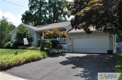 South Plainfield Single Family Home For Sale: 211 Chambers Street
