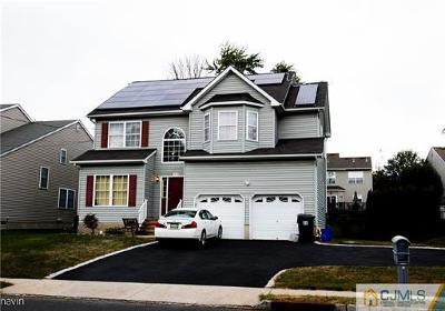 Somerset County Single Family Home For Sale: 481 Vanderveer Road