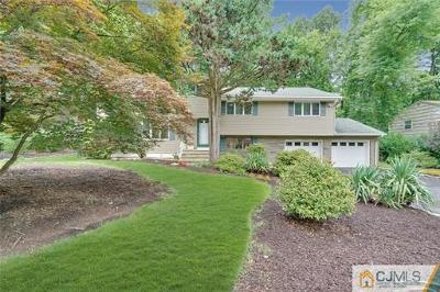 Edison Single Family Home For Sale: 28 Remington Drive