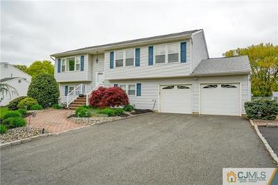 South Plainfield Single Family Home For Sale: 216 West Avenue