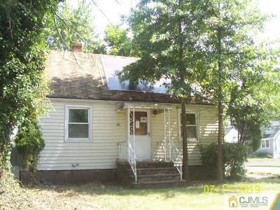 Piscataway Single Family Home For Sale: 355 William Street
