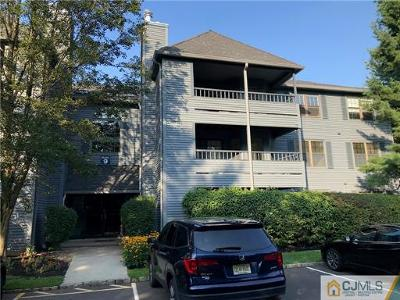 Edison Condo/Townhouse For Sale: 912 Woodhaven Drive #912