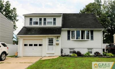 South Plainfield Single Family Home For Sale: 1127 S 9th Street