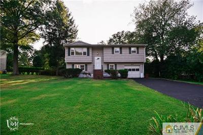 East Brunswick Single Family Home For Sale: 11 Ellison Avenue