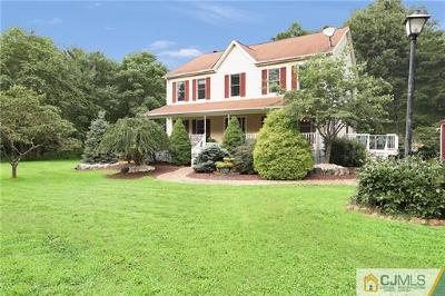 Old Bridge Single Family Home For Sale: 339 Spring Valley Road