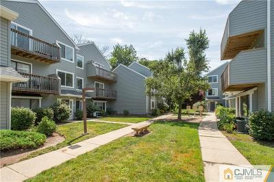 Metuchen Condo/Townhouse For Sale: 165 Essex Avenue #411