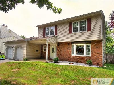 Piscataway Single Family Home For Sale: 1104 Nelson Place