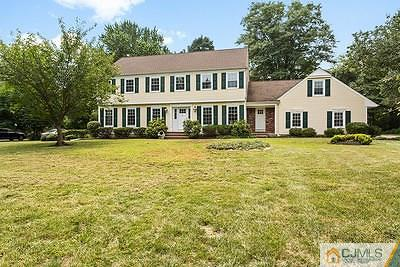 Somerset County Single Family Home For Sale: 49 Meadow Run Drive