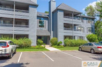 Edison Condo/Townhouse For Sale: 1204 Woodhaven Drive #1204
