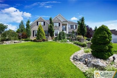Monroe Single Family Home For Sale: 17 Saddle Court