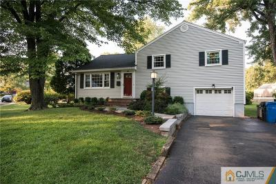 Metuchen Single Family Home For Sale: 179 Norris Avenue