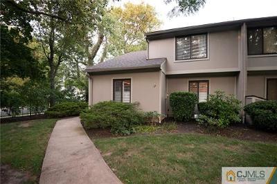 Metuchen Condo/Townhouse For Sale: 17 Irongate Avenue