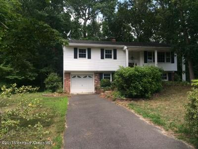 Toms River Single Family Home Under Contract: 41 Raymond Avenue