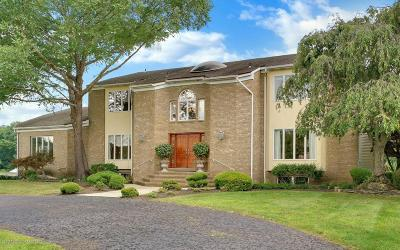 Colts Neck Single Family Home For Sale: 11 Nan Tone Court