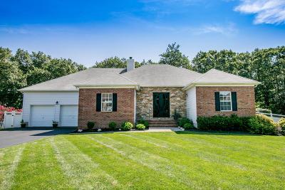 Jackson Single Family Home For Sale: 30 Highland Drive