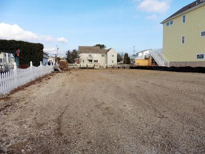 Toms River, Toms River Township Single Family Home For Sale: 320 Silver Bay Road