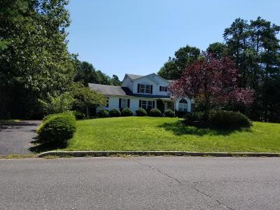 Jackson Single Family Home For Sale: 325 E Bird Village Road