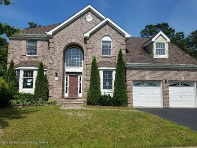 Little Egg Harbor NJ Single Family Home For Sale: $269,900