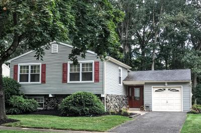 Howell Single Family Home For Sale: 24 Deer Hollow Drive