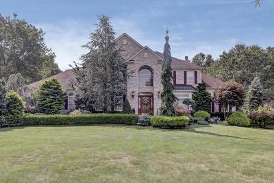 Jackson Single Family Home For Sale: 9 Alyssa Rose Lane