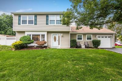Howell Single Family Home For Sale: 3 Annie Drive