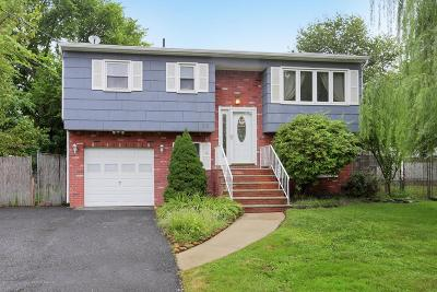 Middletown Single Family Home For Sale: 32 Nevada Avenue