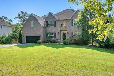 Jackson Single Family Home For Sale: 645 Jackson Mills Road
