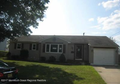 Freehold Single Family Home For Sale: 23 Patten Street