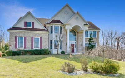 Freehold Single Family Home For Sale: 21 Richmar Court