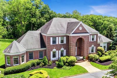 Colts Neck Single Family Home For Sale: 3 Concord Court