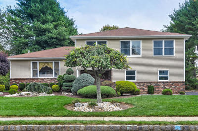 Monmouth County Single Family Home For Sale: 4 Overhill Drive